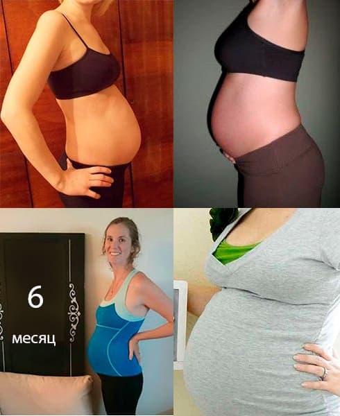 живот в 6 месяцев беременности фото