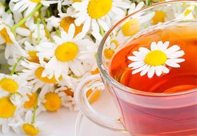 Можно ли пить чай с ромашкой при беременности