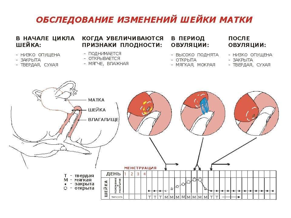 Как лечить глубокий тромбоз вен